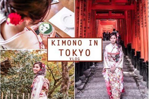 Kyoto Vlog